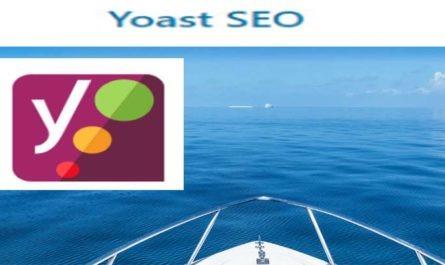 Плагин WordPress Yoast SEO как правильно настроить
